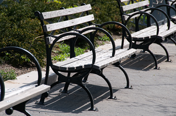 News – City Park Removes Benches
